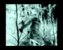 Annabelle Craven-Jones: SOMEWHERE THERE IS SOMEONE THINKING IN A WOOD (GREY NOISE INVERSE)