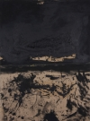 <p>Schwarze Landschaft<br /><br />2008<br />Oil on canvas<br />150 x 110 x 2 cm</p>