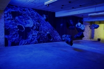 <p>Heiko Sievers - Demokrit sagt...<br /><br />2008<br />Mixed media<br />Dimensions variable</p>